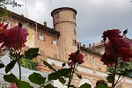Rose e Castello